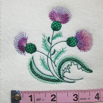 Sketch Thistle